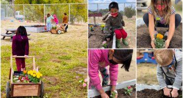 iLEAD Agua Dulce learners plant flowers in garden